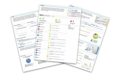 Image showing a montage of ReviewIgnite's online reputation management reports.